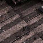 emergency roof repair 1